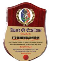 wooden Plaque By Excellence Awards International By Excellence Awards International