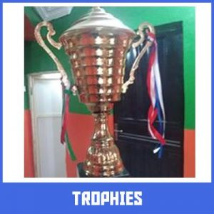 trophies in lagos by Excellence Awards International