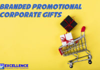 Branded Business Promotional Gift Items